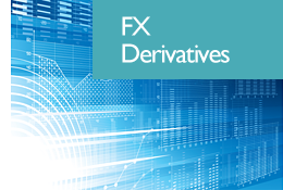FX derivatives pricing models